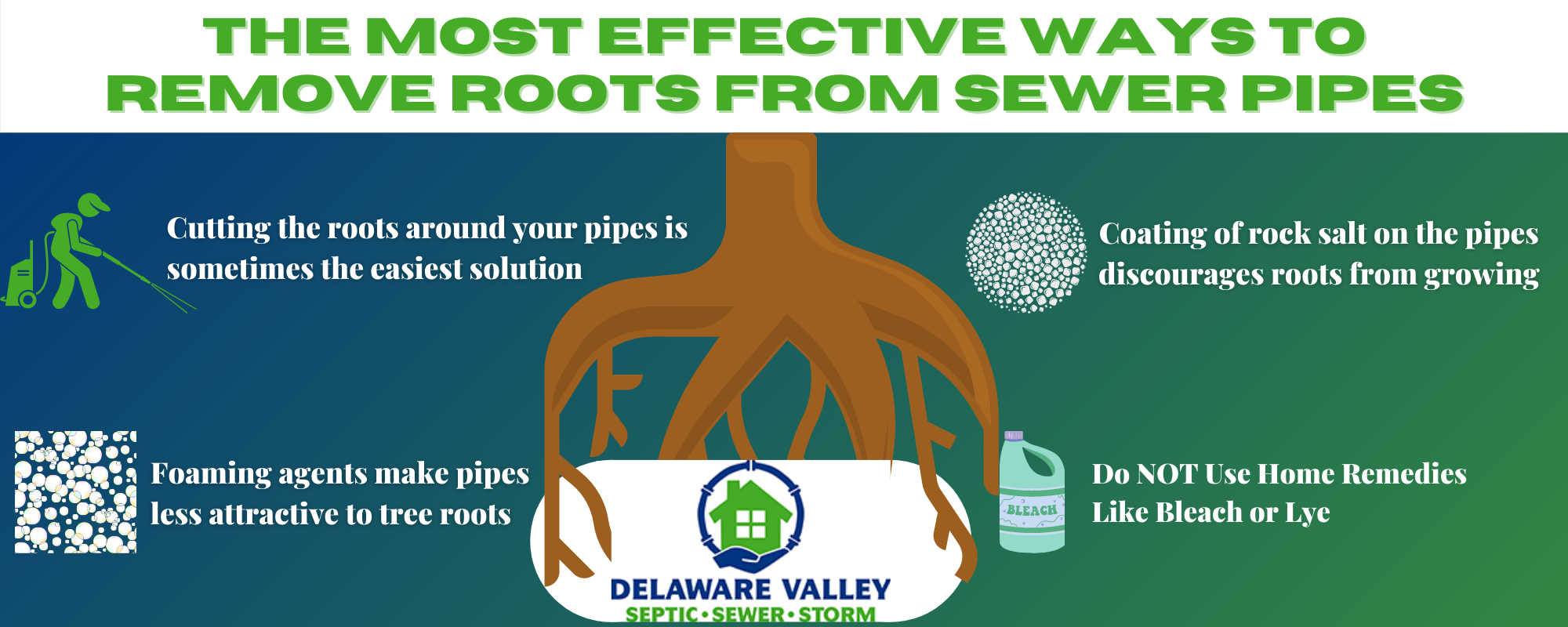 Infographic detailing the most effective ways of removing roots from your sewer pipes